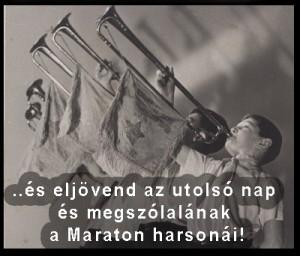 2013-maraton-utolso1